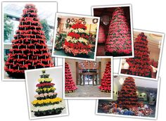 Creative Poinsettia Rack Displays for Churches, Shopping Malls, Hotel Lobbies, Supermarkets, Retail Stores & Garden Centers