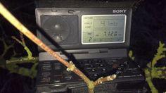 Sony ICF-SW100: Radio Hargeysa 7120 kHz, Somaliland, great reception fro...