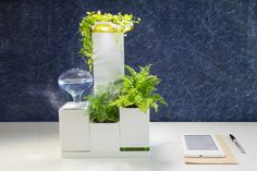 LeGrow smart garden kits