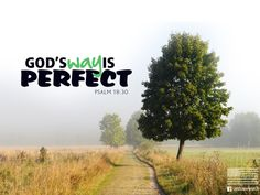 Today's Free Download at http://crossmap.christianpost.com/backgrounds/gods-way-is-perfect-2546 As for God, his way is perfect: The Lord's word is flawless; he shields all who take refuge in him.  -Psalm 18:30  #background #wallpaper #Jesus #Christ #Crossmap