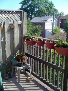 An apartment balcony is a great place for an herb garden.  Herbs will fill your balcony with a heavenly scent and spice up your cooking.
