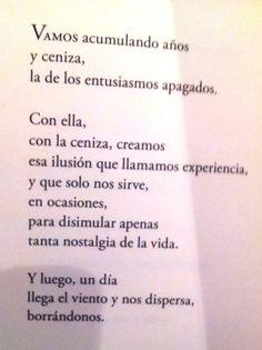Karmelo C. Iribarren poeta 4