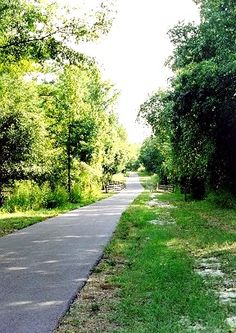Gainesville - Hawthorne Trail  #HawthorneTrail  #Biking  #Hiking  #HorseRiding  #GainesvilleFL  #GainesvilleFlorida  www.EyemarkRealty.com  #www.GainesvilleFloridaHomes.com