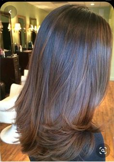 Brown Ombre Hair, Brown Hair With Highlights, Ombre Hair Color, Light Brown Hair, Brown Hair Colors, Gray Hair, Blonde Hair, Brown Hair On Black Hair, Brown Straight Hair