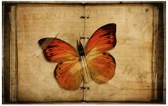 Bullet With Butterfly Wings by ~goatheadcorp on deviantART | We ...