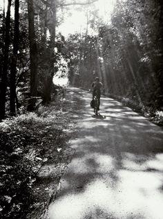 Cycling surround shadows and morning flares