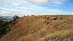 Tabletop mountain, Toowoomba