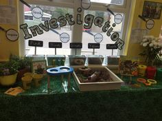Mini beasts in the investigation area. Inquiry Based Learning, Kids Learning Activities, Spring Activities, Science Activities, Classroom Decor Themes, Classroom Displays, Kindergarten Science, Science Classroom, Investigation Area