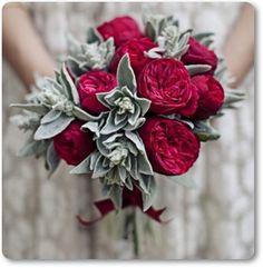 Swedish Flower Blogs: Roses & lamb ears - Roses & Lamb's Ears