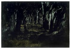 edward steichen landscape - Google Search