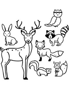 Collection of hand-drawn forest animals Free Vector Animal Coloring Pages, Coloring Pages To Print, Coloring Books, Animal Sketches, Animal Drawings, Penny Rug Patterns, Science Projects For Kids, Forest Animals, Digi Stamps