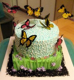 Butterfly Cake | Cake done for a child's birthday party. Mos… | Flickr