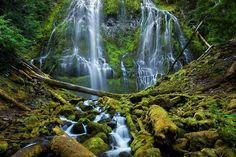 cascade-foret-verdure