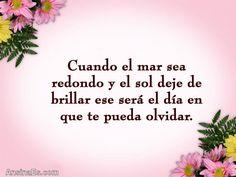 Frases de Amor - Cuando el mar sea redondo