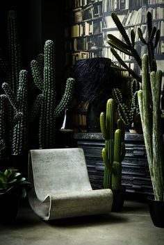 38 Faux Cactus and Succulent Projects and Ideas to Decorate Your Home Matchness - The world's most private search engine Interior Plants, Interior And Exterior, Indoor Garden, Indoor Plants, Faux Plants, Indoor Cactus, Decorating Your Home, Interior Decorating, Interior Design