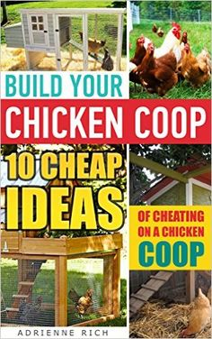 Build Your Chicken Coop: 10 Cheap Ideas Of Cheating On A Chicken Coop: (Keeping Chickens, Raising Chickens For Dummies, Chickens, Ducks and Turkeys, Urban ... Guide to Raising Backyard Chickens) - Kindle edition by Adrienne Rich. Crafts, Hobbies & Home Kindle eBooks @ Amazon.com.