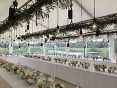 Wedding marquee lighting, Edison style
