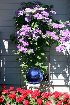Flowers are indeed one of the most exquisite things you'll come across. That being said, placing a custom-made garden gazing ball on the plants will really give its appearance a whole new dimension. Find more ideas for your home here -> @HomeImprovementFactory.com