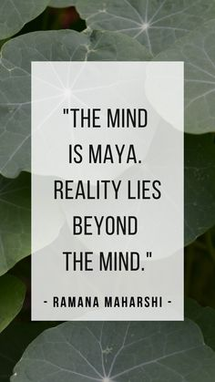"""""""The mind is maya (illusion). Reality lies beyond the mind. Life Quotes Pictures, Home Quotes And Sayings, Great Quotes, Words Quotes, Inspirational Quotes, Revelations Quotes, Illusion Quotes, Consciousness Quotes, Advaita Vedanta"""