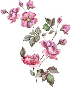 Floral Motif, Floral Prints, Textile Prints, Textile Design, Bunch Of Flowers, Small Flowers, Botanical Flowers, Botanical Art, Floral Print Wallpaper