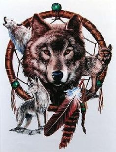 Native American Indian Wolf Dream Catcher Adult Unisex T Shirt 12274