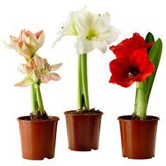 http://www.ikea.com/nl/nl/catalog/products/90329922/