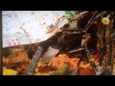 Oklahoma tornado victim finds her dog - YouTube