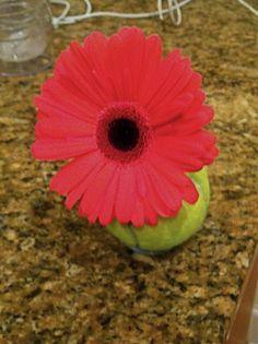 Tennis ball flower vase.