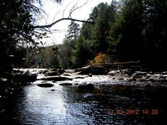 1000 images about georgia on my mind on pinterest six for Toccoa river fishing