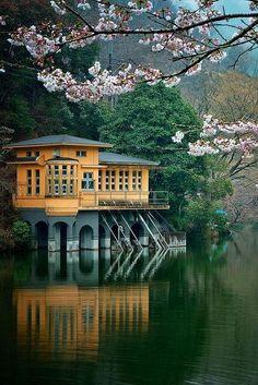↰✯↱lugares - Lake House, Saitama, Japan photo via graham Places Around The World, The Places Youll Go, Places To See, Around The Worlds, Photo Japon, Japan Photo, Beautiful World, Beautiful Places, Saitama Japan