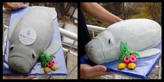 Manatee Cake Submitted to Save The Manatee Club by Sticky Password Manager  www.stickypassword.com