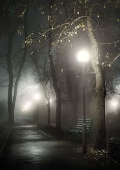 Love the foggy look it's so Eerie! Night Photography, White Photography, Nature Photography, Travel Photography, Night Photos, Belle Photo, Beautiful Images, Mists, Paths