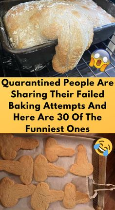 Quarantined People Are Sharing Their Failed Baking Attempts Baking Fails, Bikini Tattoo, Funny Note, Things To Do At Home, Edible Gifts, Boy Hairstyles, Funny Pins, Pranks, Mom And Dad