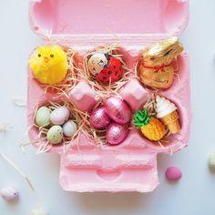Egg Carton Fillers