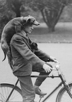 51 Ideas dogs black and white photography vintage photos I Love Dogs, Puppy Love, Mans Best Friend, Best Friends, True Friends, Man And Dog, Tier Fotos, Belle Photo, Black And White Photography