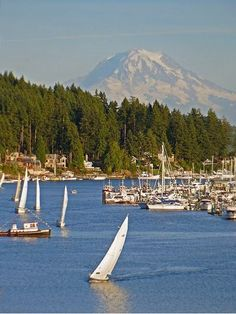 Gig Harbor, WA ~ The 5th Best Small Town In America ~ Yes...a vacation back in my old territory! How nice!! :-) Beautiful Mt. Rainer!