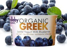 Organic Greek Blueberry Yogurt.