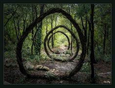 forest-land-art-nature by Spencer Byles. Organic Sculpture, Sculpture Art, Garden Sculptures, Geometric Sculpture, Metal Sculptures, Abstract Sculpture, Bronze Sculpture, Zoom Wallpaper, Garden Art