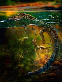 Philydrosauras choristodere aquatic reptiles fossil shows post natal parental care marine reptiles Prehistoric Dinosaurs, Prehistoric Creatures, Reptiles And Amphibians, Mammals, Post Natal Care, Extinct Animals, Charles Darwin, Thing 1, Geology