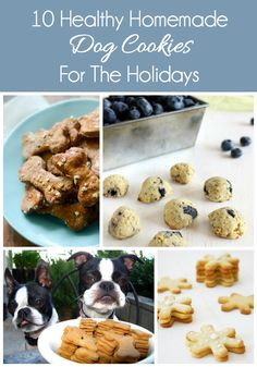 10 Healthy Homemade Dog Cookies