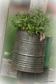 Flour sifter used as a flower pot--TOO CUTE!!  (plant with herbs)