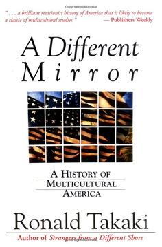 ronald takaki a different mirror essay