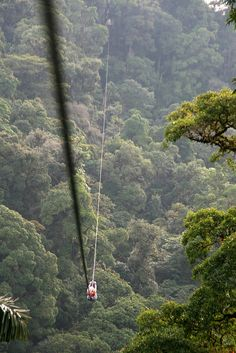 zip lining the largest zip line in the world ~ Arenal Costa Rica.