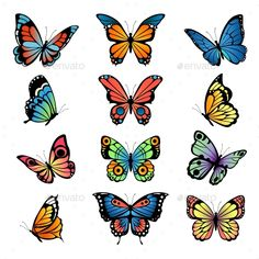 Buy Various Cartoon Butterflies. Set Vector by ONYXprj on GraphicRiver. Various cartoon butterflies. Set vector illustrations of butterflies. Colored butterfly insect, various natural brigh. Cartoon Butterfly, Butterfly Art, Traditional Butterfly Tattoo, Butterfly Metamorphosis, Insect Art, Watercolor Illustration, Graphic Illustration, Tattoo Quotes, Insects