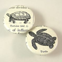 Turtle Pinback Button Set by XOHandworks