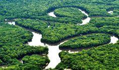 O Planeta Amazonas | AmazonasTur