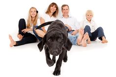 Family Portrait Photograph and their Inquisitive Dog