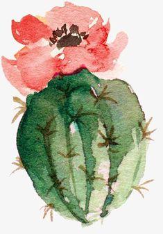Cactus Painting, Watercolor Cactus, Cactus Art, Cactus Flower, Watercolor Paintings, Simple Watercolor, Tattoo Watercolor, Watercolor Animals, Watercolor Background