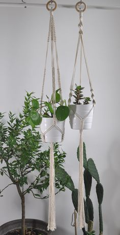 Set of 2 knotted modern macrame plant holders. Natural cotton minimalistic macrame plant holders for boho decor or scandinavian interiors. Beautiful decor or every home garden. Those two are definitely cute brothers! Can be bought separately: 1. https://www.etsy.com/listing/277037274/plant-hanger-macrame-hanging-planter?ref=shop_home_active_13 2. https://www.etsy.com/listing/470522530/plant-hanger-macrame-hanging-planter?ref=shop_...