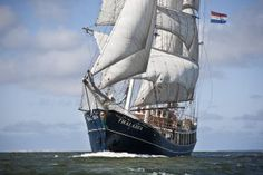 Tallship de Thalassa. #Tallship #zeilen Tall Ships, Sailing Ships, Van, Vans, Sailboat